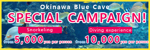 Okinawa Blue Cave SPECIAL CAMPAIGN!